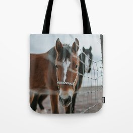 On the Road to Flagstaff, v.4 Tote Bag