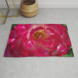 A Rosy Glow - Double Delight Rose Rug