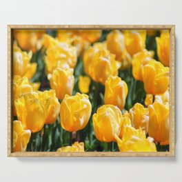 Neon Yellow Tulips Serving Tray