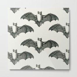 Bats 1 Metal Print