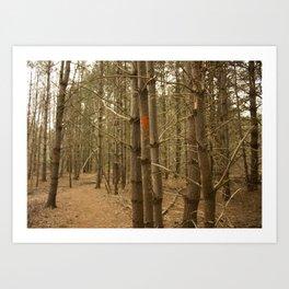 Paint Trail Marker - Massachusetts hiking Art Print