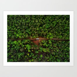 Nature Is Still The Most Superior Technology Art Print