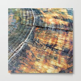 Rustic Country Wood Metal Print
