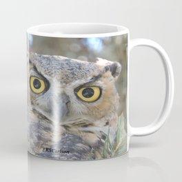 Young Owl at Noon Coffee Mug