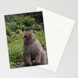 A Forlorn Summer Day Stationery Cards