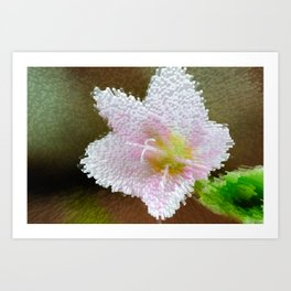 Pink White Flower Art Print
