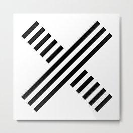 xp Metal Print
