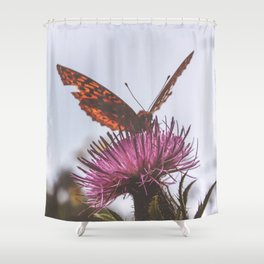 Aphrodite Fritillary Butterfly on Thistle Photography Shower Curtain