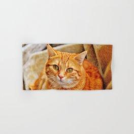 Cute red cat Hand & Bath Towel