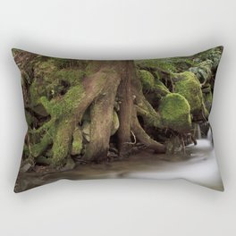 Paradise Creek II Rectangular Pillow