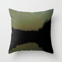 soaring at dusk Throw Pillow