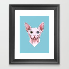 Sphynx cat portrait Framed Art Print