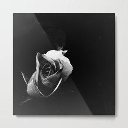 Rose Noir Metal Print