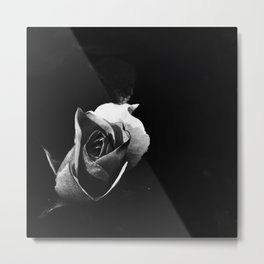 Rose Noir Metal Print