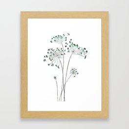 wild carrot watercolor Framed Art Print