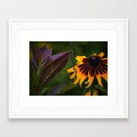 burgundy Framed Art Prints featuring Burgundy BFFS! by gymmybob