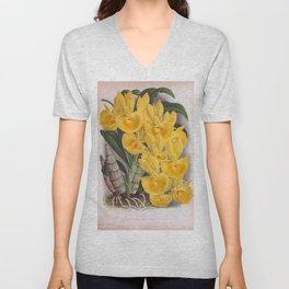 Vintage Lush Yellow Orchids Catasetum Bungerothi Unisex V-Neck