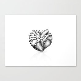 Just a heart Canvas Print