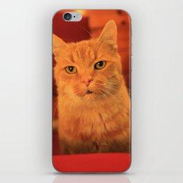 Cat in Red with milk mustache iPhone Skin