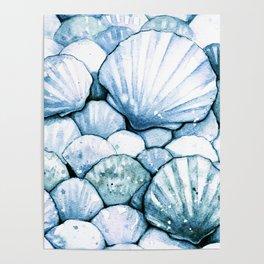 Sea Shells Teal Poster