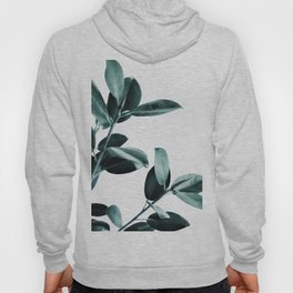 Natural obsession Hoody