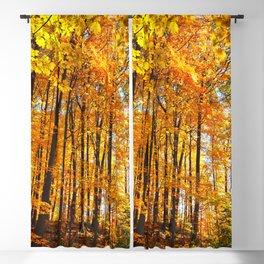 Autumn Hillside Blackout Curtain