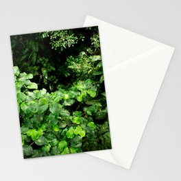 Rainforest Canopy Stationery Cards
