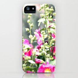 Chuparosa checking out all the Pink Pink Hollyhocks by CheyAnne Sexton iPhone Case