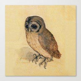 Albrecht Durer The Little Owl Canvas Print