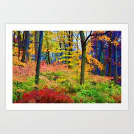 Down in the Hollow Art Print