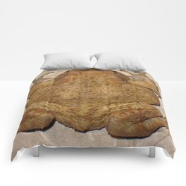 Overhead Anatomy Of a Bufo Bufo Toad Comforters