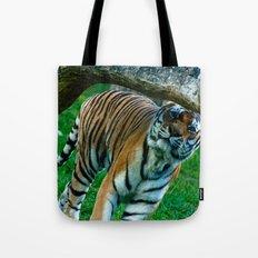tiger 2 Tote Bag