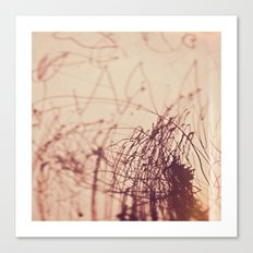 miriams drawing Canvas Print