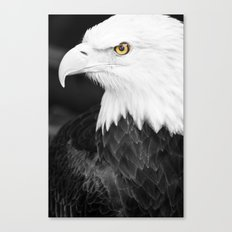 Bald Eagle with Yellow Eye Canvas Print