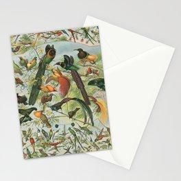 Fancy Birds Stationery Cards