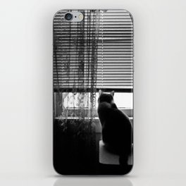 Window cat iPhone Skin