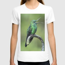Green-crowned brilliant Hummingbird with open mouth T-shirt
