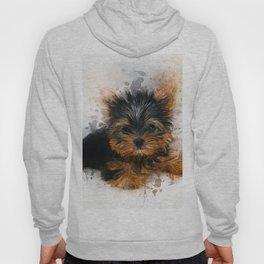 Yorkshire Terrier Puppy Hoody