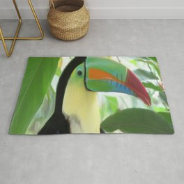 Keel billed Toucan  Rug
