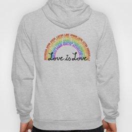 "LGBTQ+ Rainbow ""Love is Love"" multi-language Hoody"