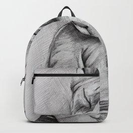 Sphynx cat Backpack