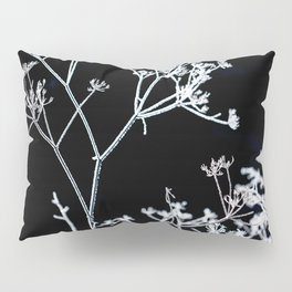Frosted plant at cold winter day on black background Pillow Sham
