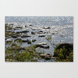 Michigan Canvas Print