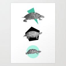 Three Old Turtles Art Print