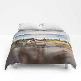 Herd of cows walking across puddle Comforters