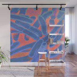 FLU Wall Mural
