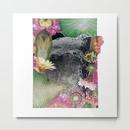 Turtle #3 (Desert Flower Moon) [Cecilia Lee] Metal Print