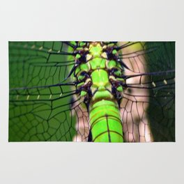 Emerald Flight Rug