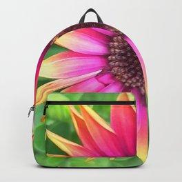 Osteospermum Backpack