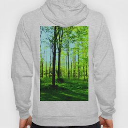 Sky Blue Morning Forest Hoody
